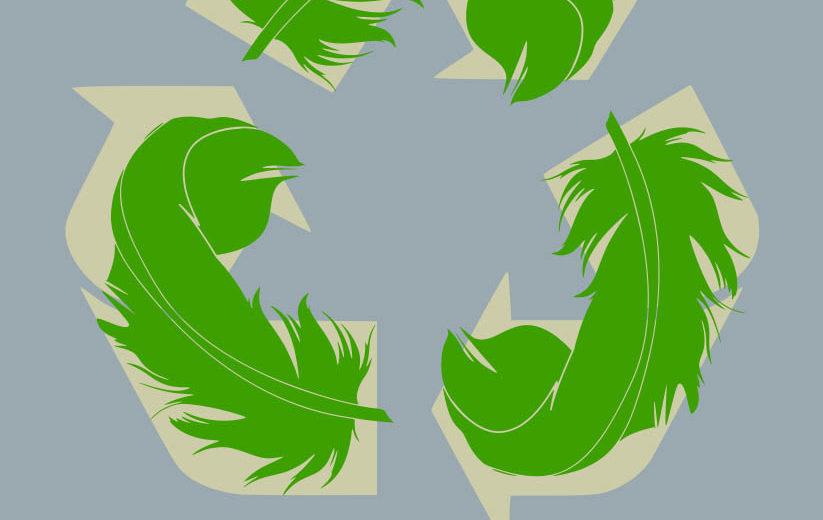 piumini ecologici etici